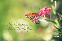 No Change, No Butterflies